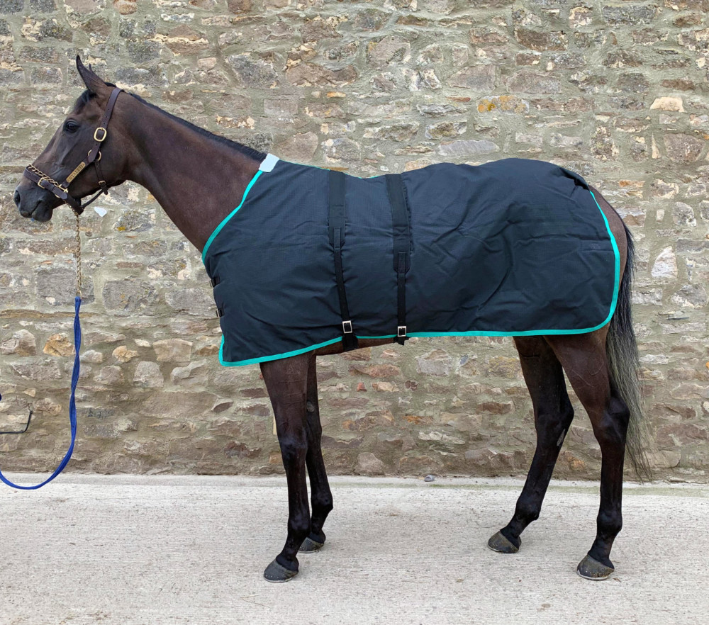 YARIS TURNOUT RUG - HOW DO YOU LIKE YOURS?
